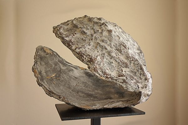 joseph-cals-recent-shell-bronze-47x60x50